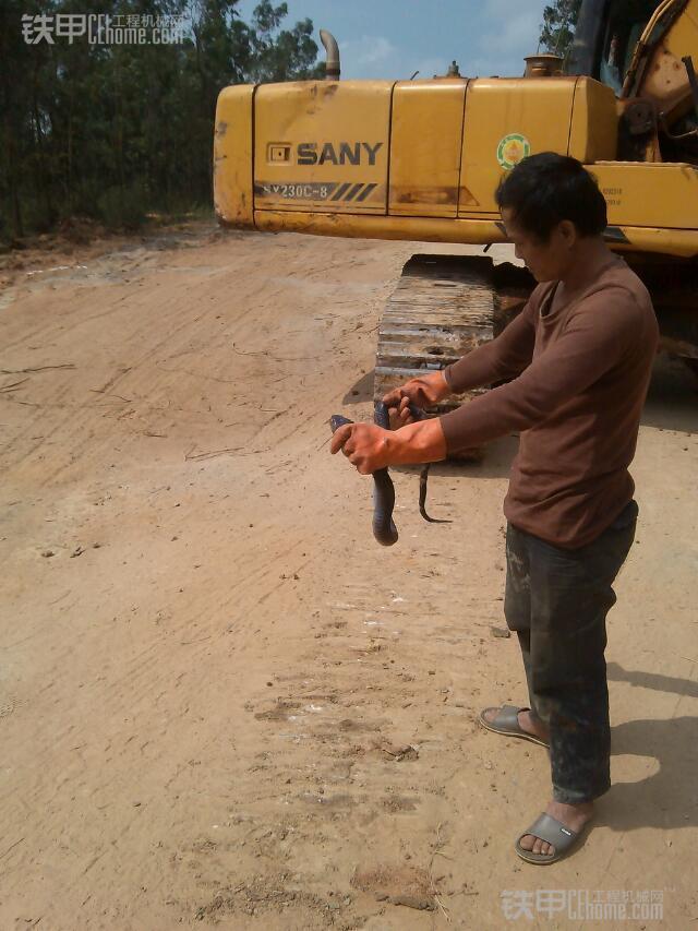 城市的建造者 小伙儿开挖机为高铁铺路(图4)