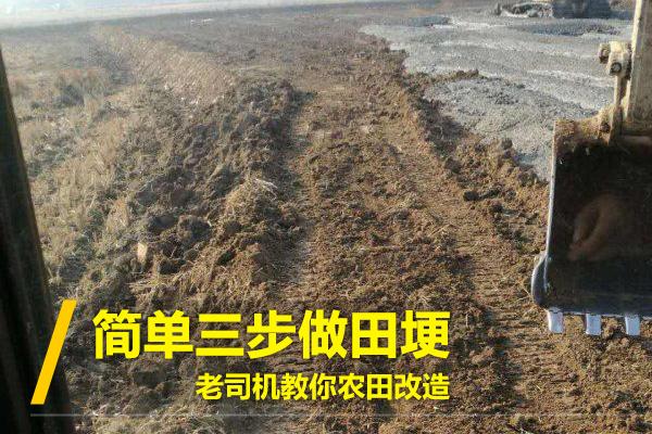 轻松三步,老司机教你用挖机做田埂!(图1)